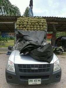 รถรับจ้างขนของประจวบเพชรบุรี