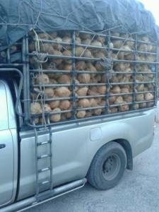รถรับจ้างขนของราชบุรี
